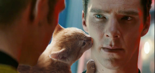 benedict-cumberbatch-cat-10-elite-daily